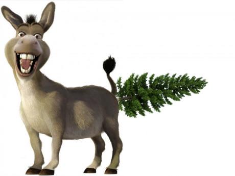 460x345 Best Donkey Fun On 9gag