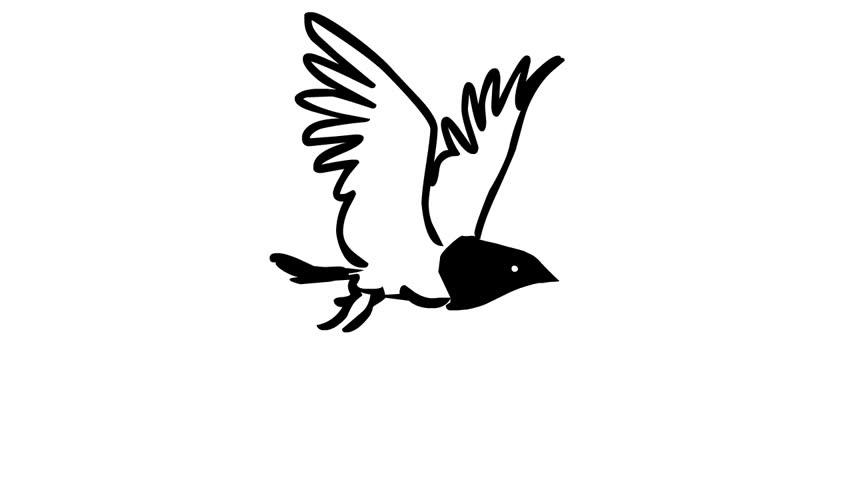 852x480 Flying Bird (Loop Animation) Stock Footage Video 2362127