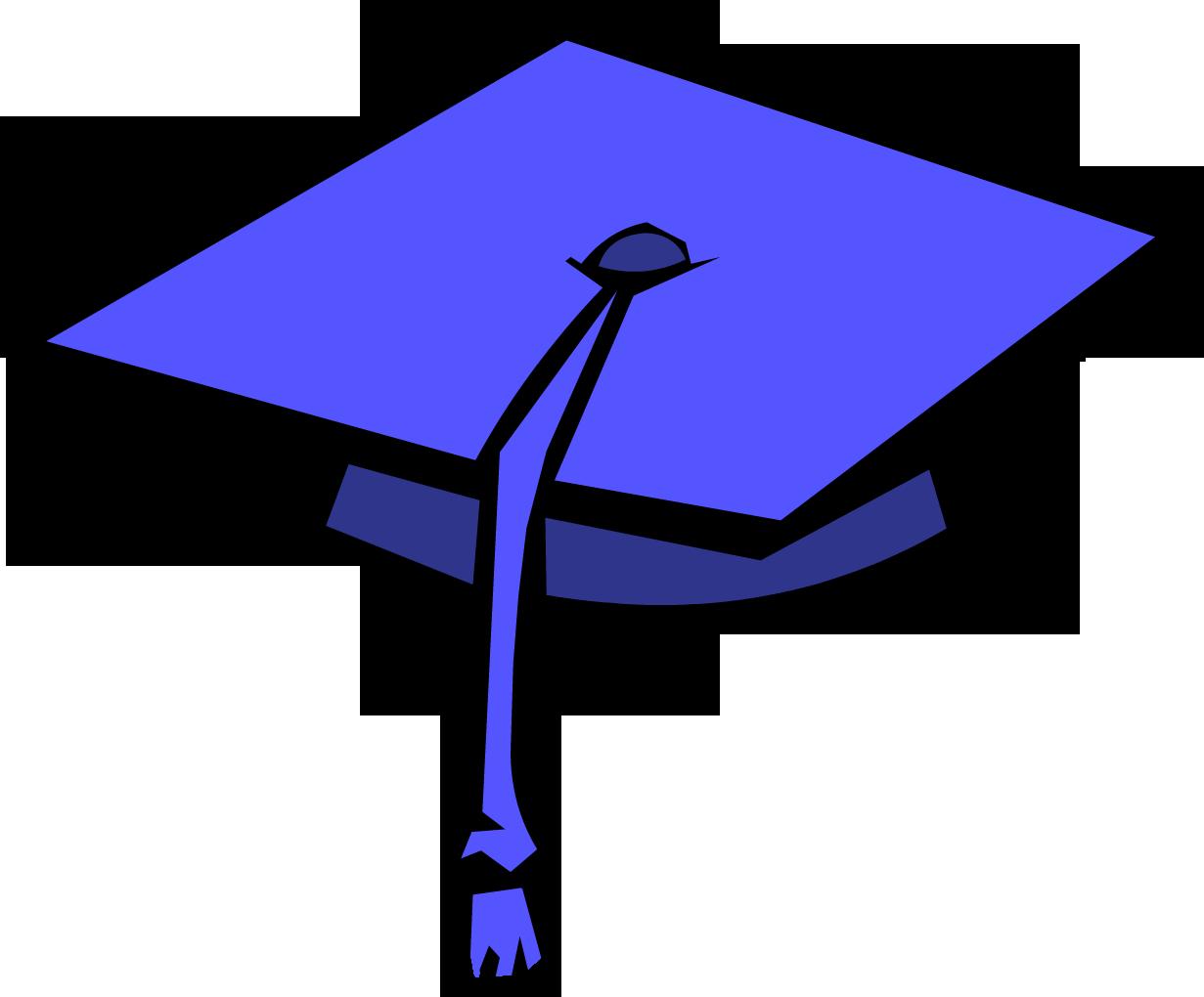 1231x1020 Graduation Cap Club Penguin Wiki Fandom Powered By Wikia