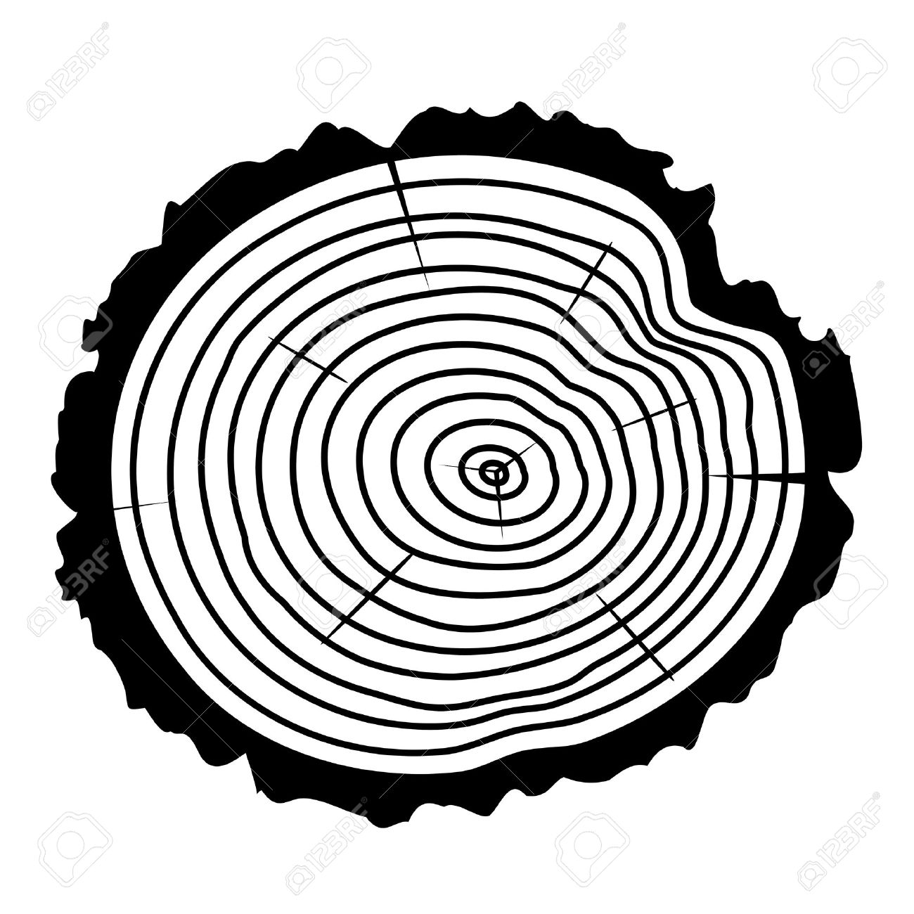 1300x1300 Black And White Wooden Cut Of A Tree Log With Concentric Rings