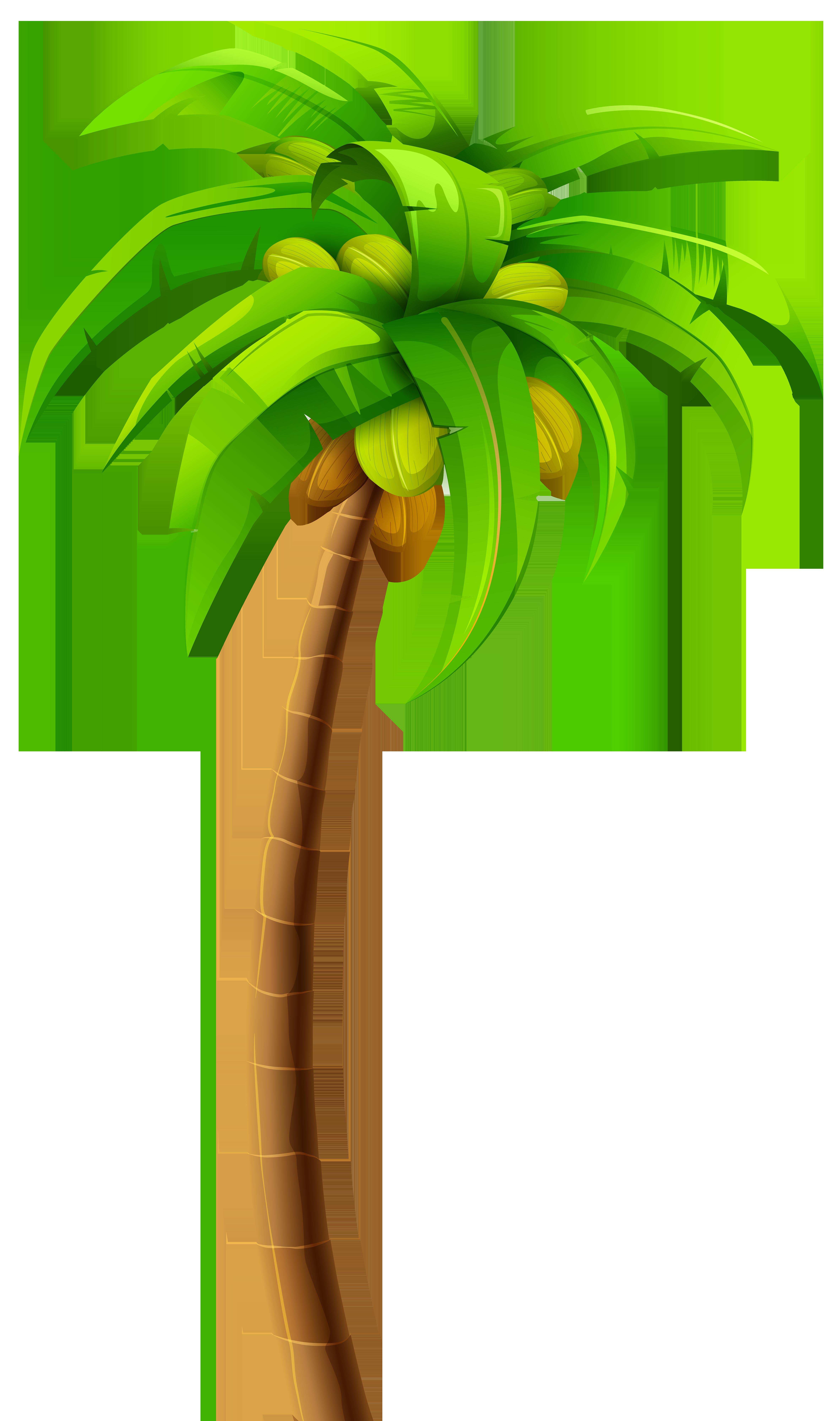 4730x8000 Palm Tree Clipart Jamaican