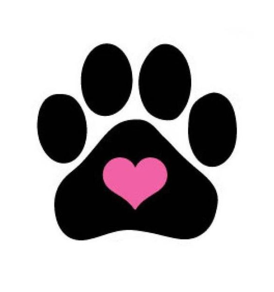 564x600 Image Of Paw Print Collection