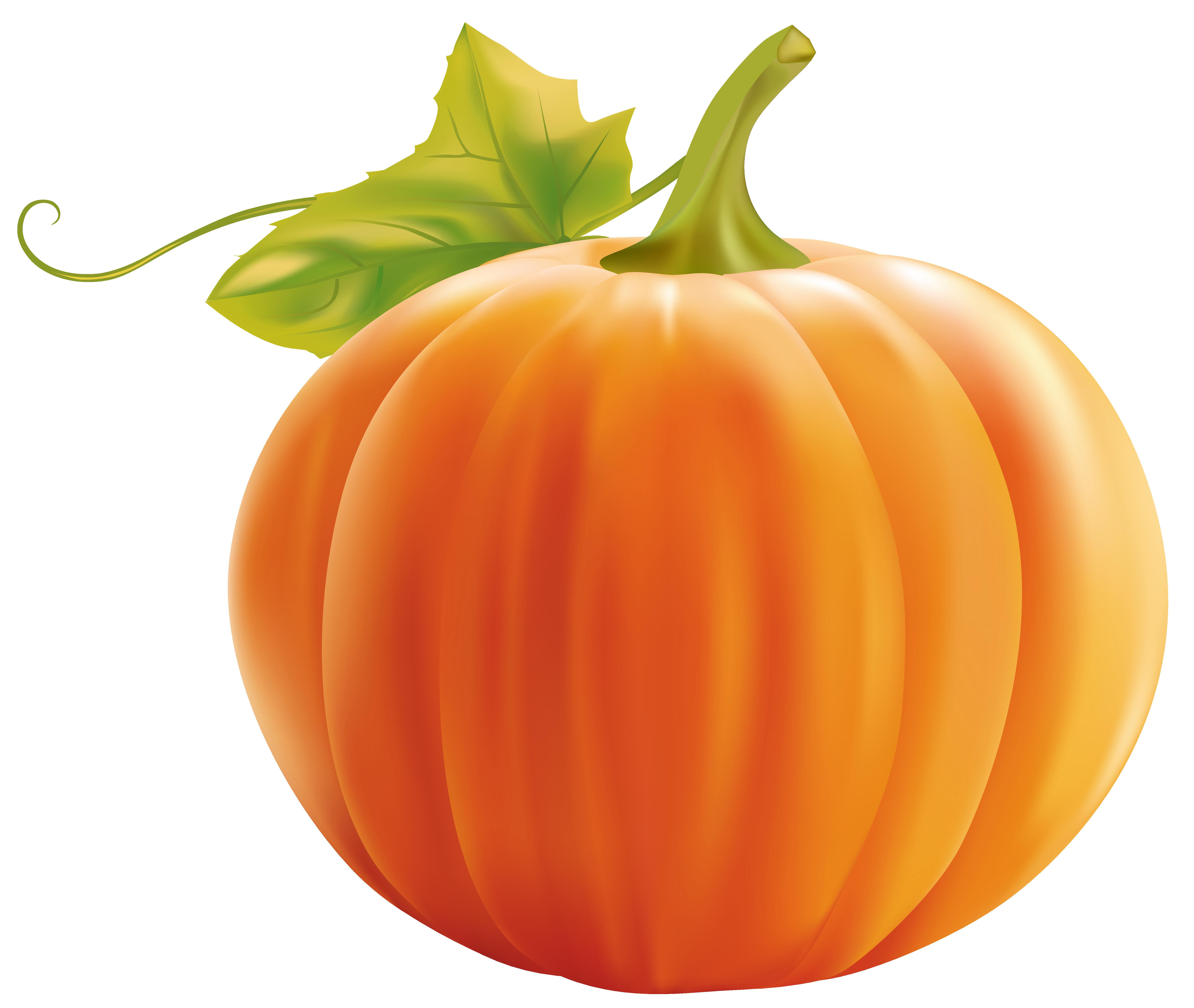 6258x5286 Pumpkin Clipart Image