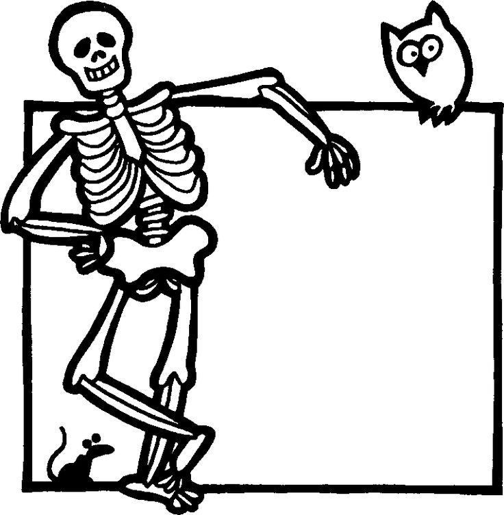 Picture Of A Skeleton For Kids