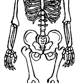 322x329 Coloring Page Skeleton Coloring Pages For Kids Human Skeleton