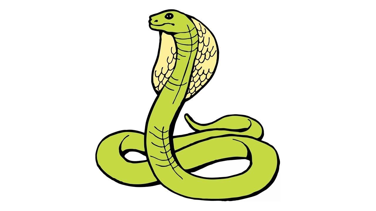1280x720 How to Draw a Snake (cobra, naja, animals)