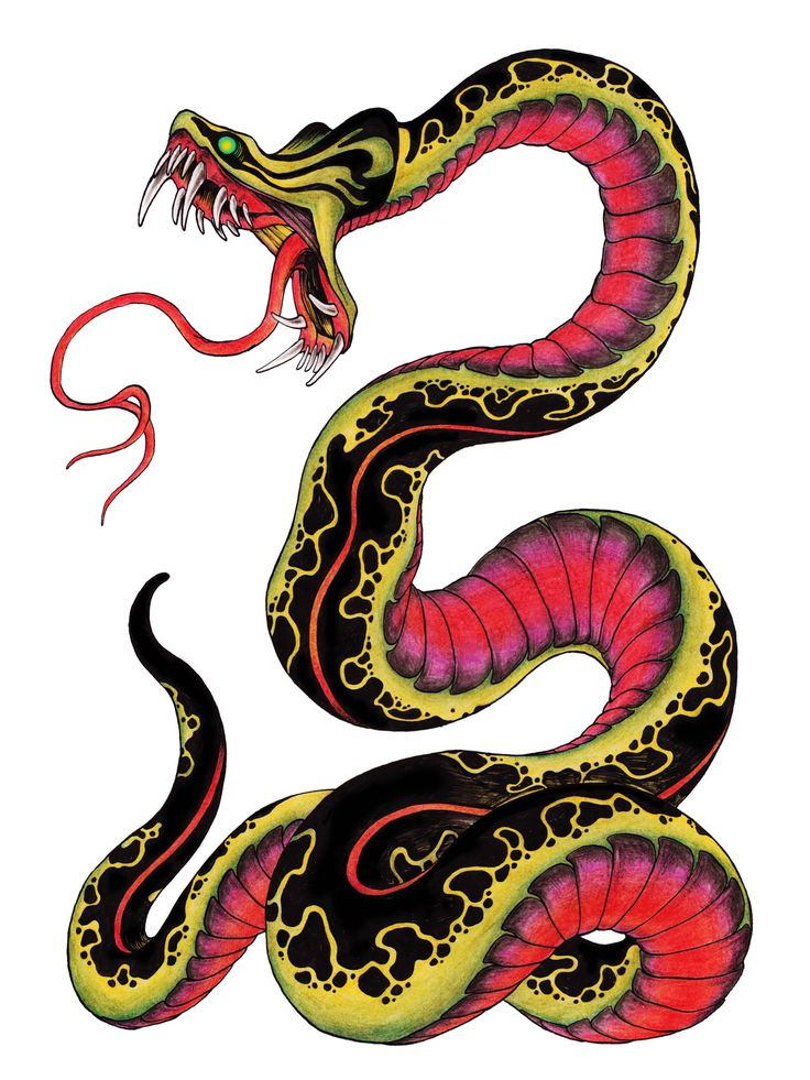 736x981 Snake Clipart Horrible