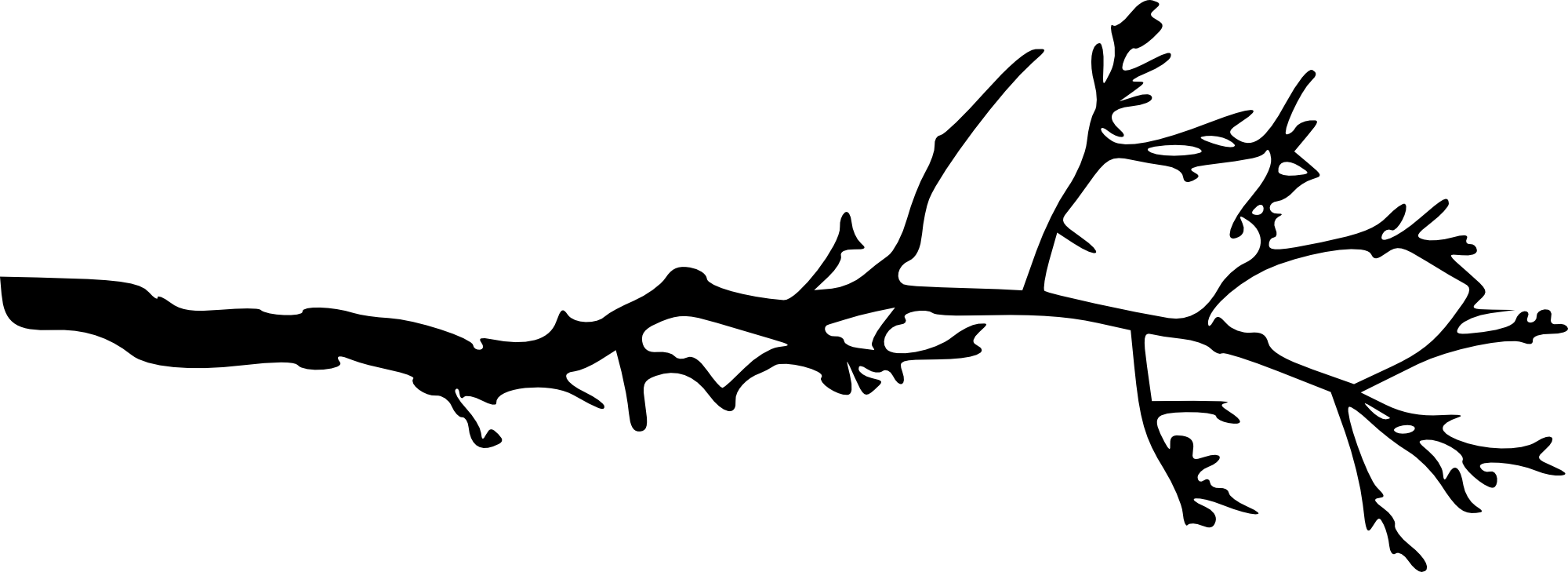 2000x729 15 Simple Tree Branch Silhouettes (Png Transparent)