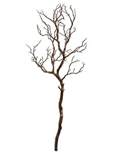 225x300 38 Manzanita Tree Branch Brown (Pack Of 6) Home