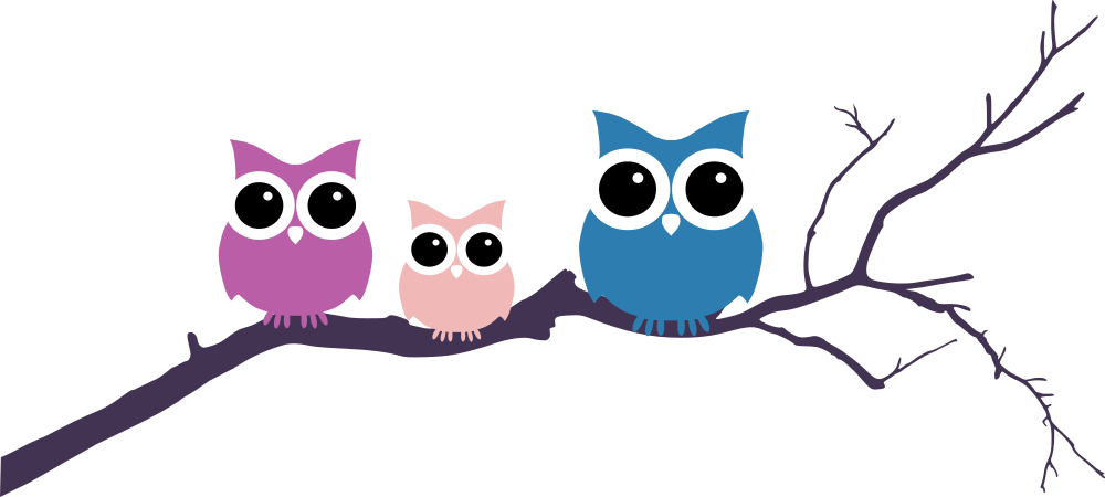 1000x450 Three Owls Tree Branch