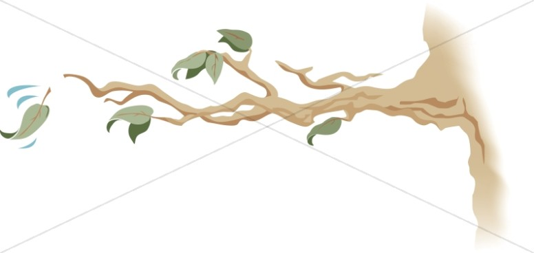 776x368 Tree Branch With Falling Leaf Leaf Clipart