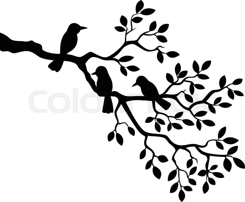 800x658 Vector Illustration Of Cartoon Tree Branch With Bird Silhouette