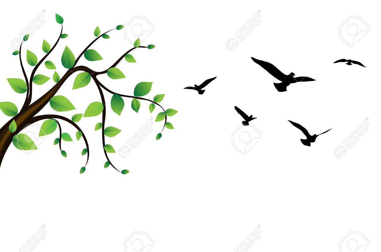 1300x859 Bird Around A Tree Branch Royalty Free Cliparts, Vectors,