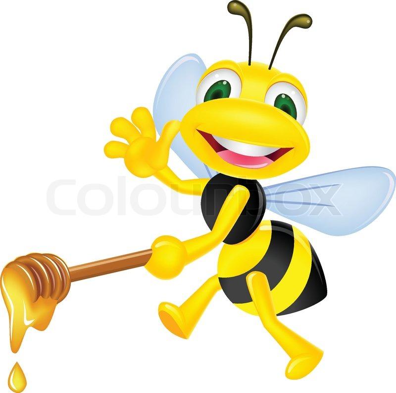 800x793 Bee With Honey Stock Vector Colourbox