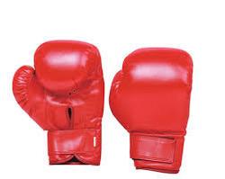 250x199 Boxing Glove In Jalandhar, Punjab Mukkebaji Wale Dastane