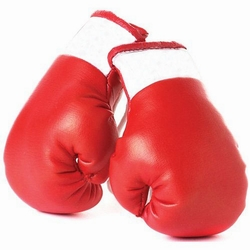 250x250 Mini Boxing Gloves Mini Boxing Gloves Manufacturer,pakistan Boxing