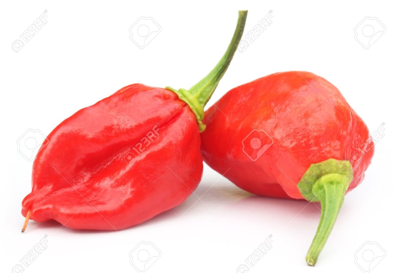 1300x892 Ghost Chili Stock Photos. Royalty Free Ghost Chili Images And Pictures