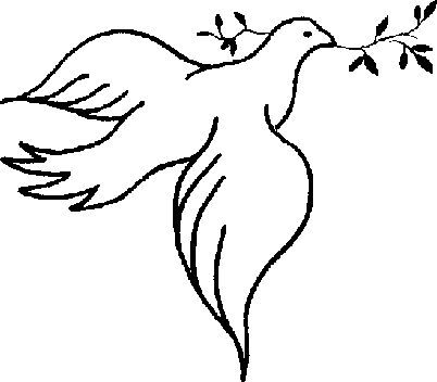 402x352 50 Best Doves, Symbol Of Peace Images Bird Artwork