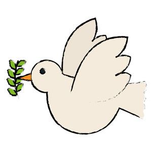 300x300 Vector Dove With Olive Branch Royalty Free Stock Image