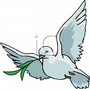 300x294 White Dove With An Olive Branch