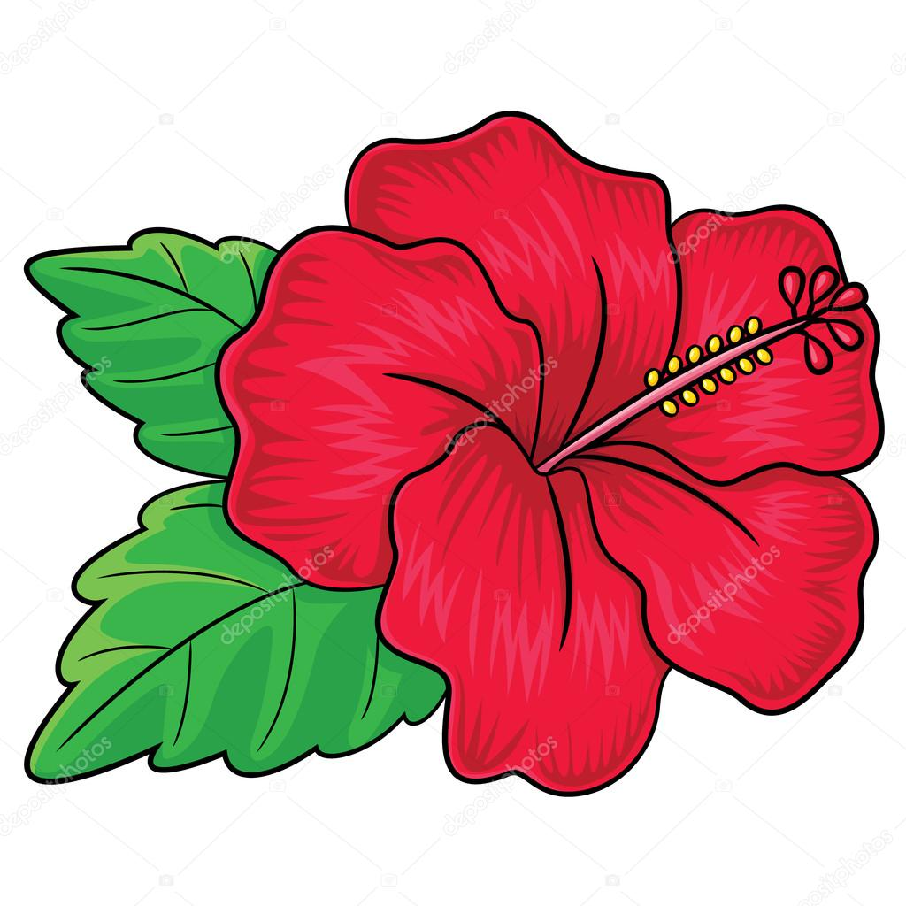 1024x1024 Hibiscus Flower Cartoon Stock Vector Rubynurbaidi