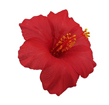 355x343 Hawaiian Hibiscus Flower Hair Clip (Red) Beauty