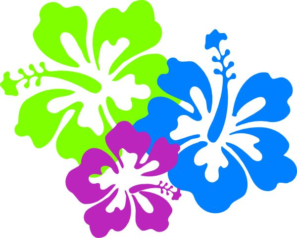 600x482 Floral Clipart Hibiscus Flower