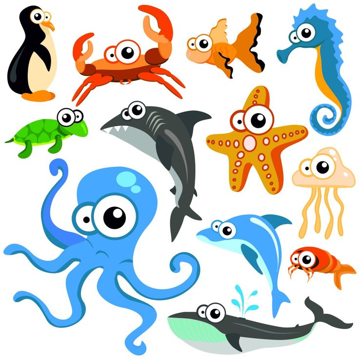 Picture Of Ocean Animals