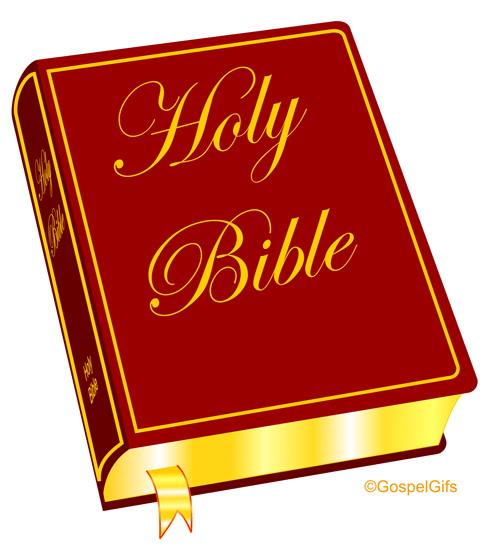 488x560 A Bible.jpg