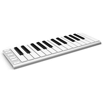 350x350 Xkey 25 Key Portable Musical Keyboard Musical Instruments