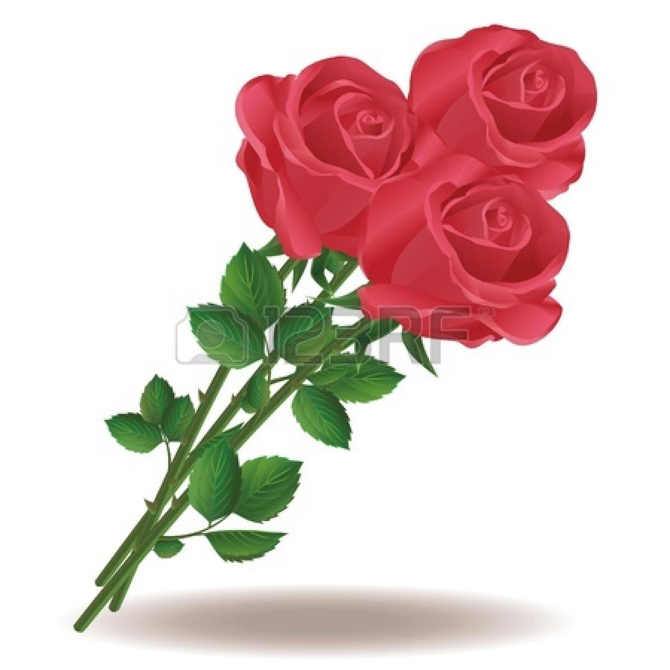 1350x1350 Bouquet Clipart Dozen Rose