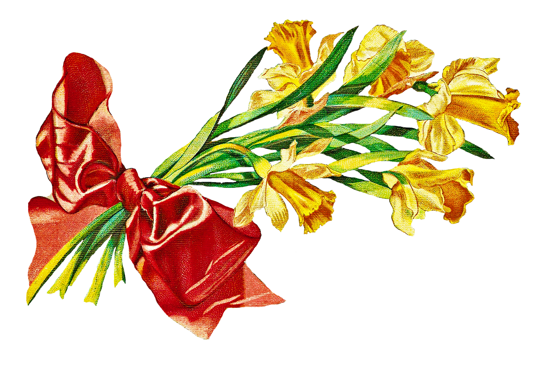 1785x1196 Bouquet Clipart May
