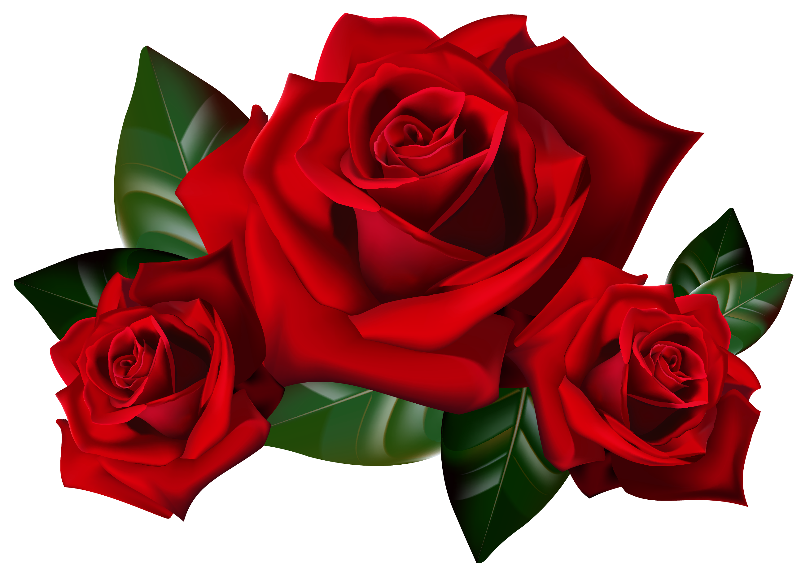 2586x1840 Clip Art Of Red Roses Bouquet Clipart Kid