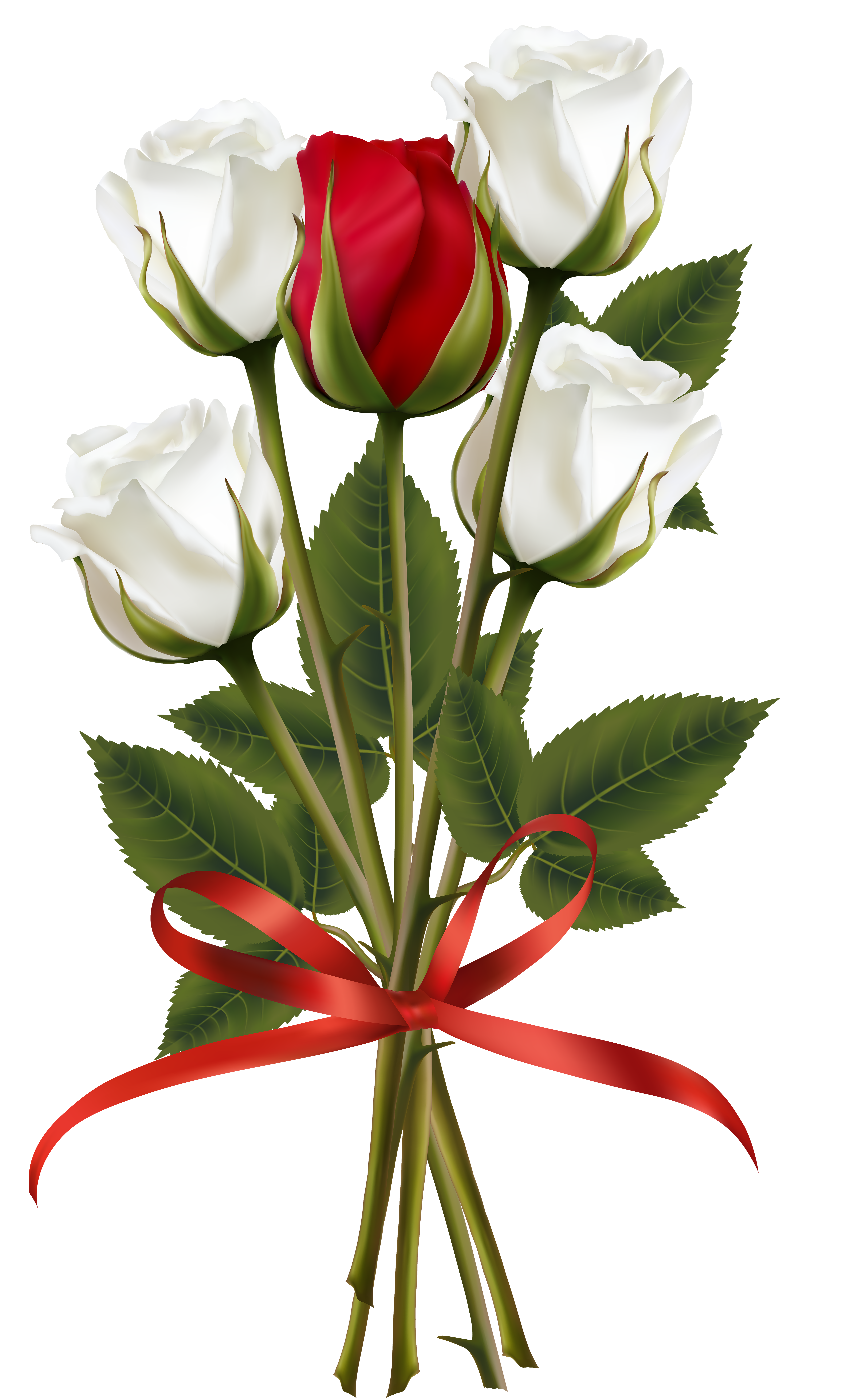 4288x7000 White And Red Rose Bouquet Transparent Png Clip Art Image