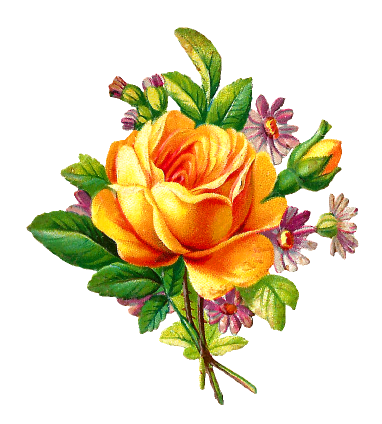 764x848 Yellow Rose Bouquet Clipart