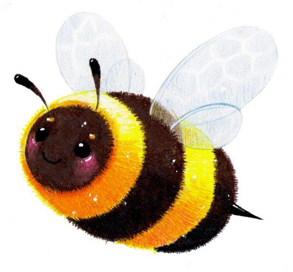 600x557 346 Best Bee Images Queens, Bee And Beehive