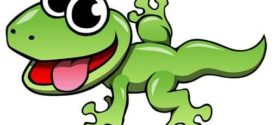 272x125 11 Best Lizards Images On Lizards, Reptiles