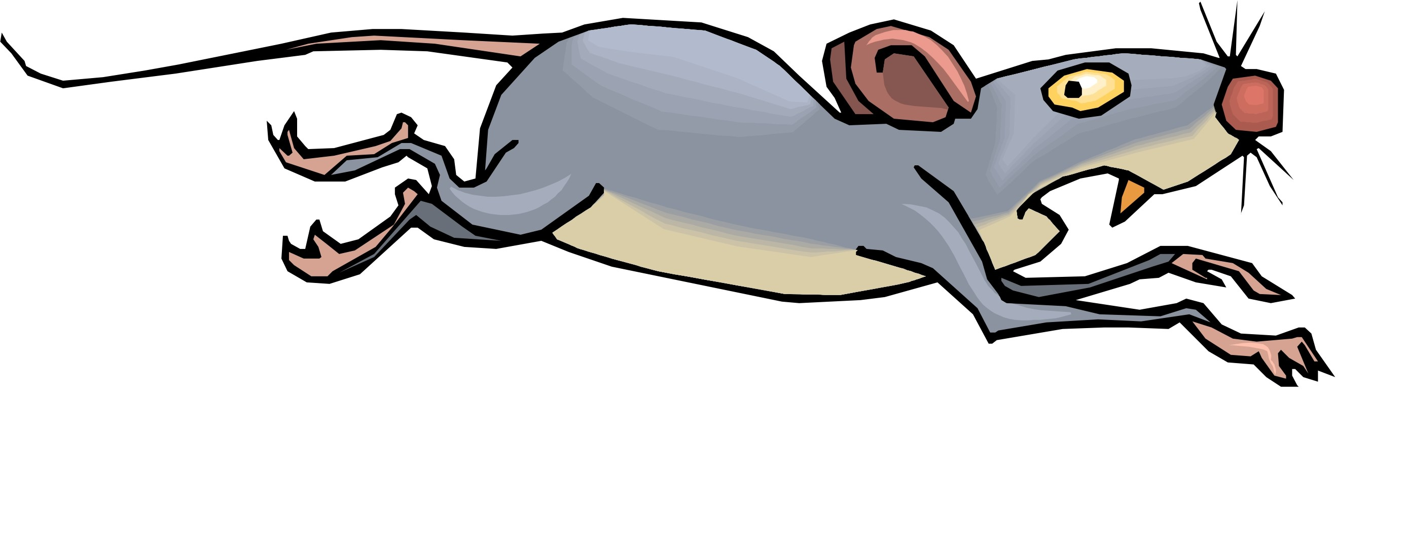 2775x1057 Cartoon With Mice And Rats
