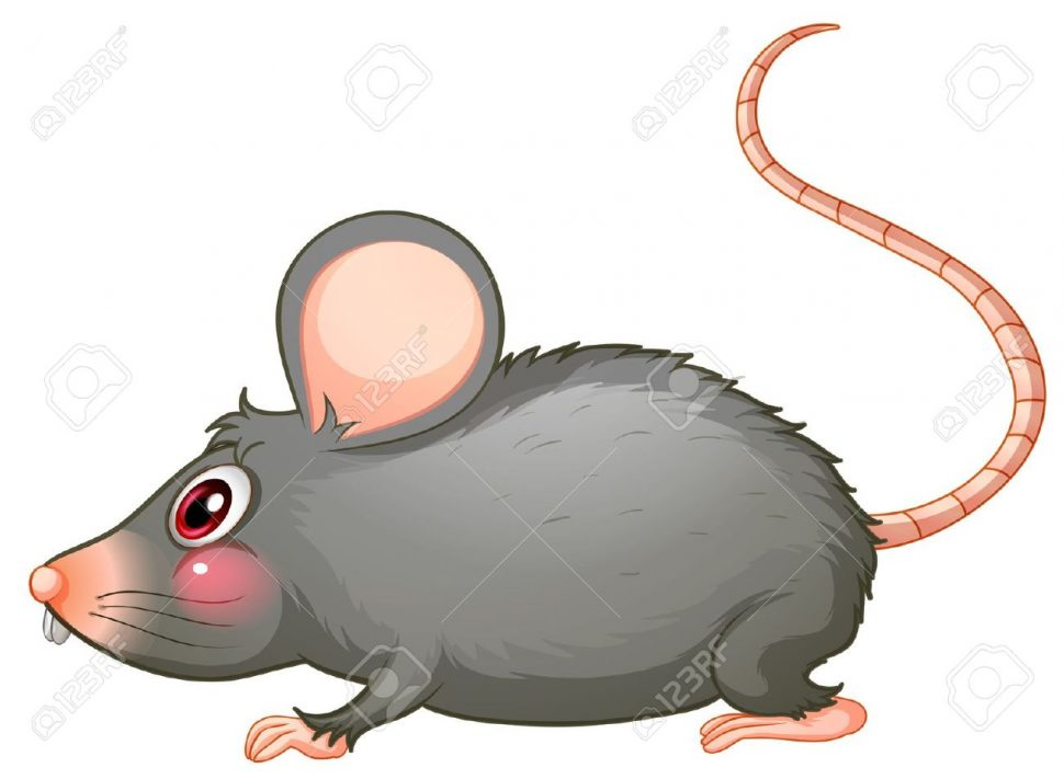 970x711 Coloring Pages Cartoon Rats Pictures Rat Coloring Pages Cartoon