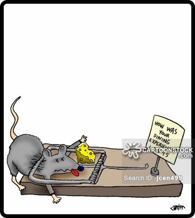 400x448 Mouse Trap Cartoons and Comics