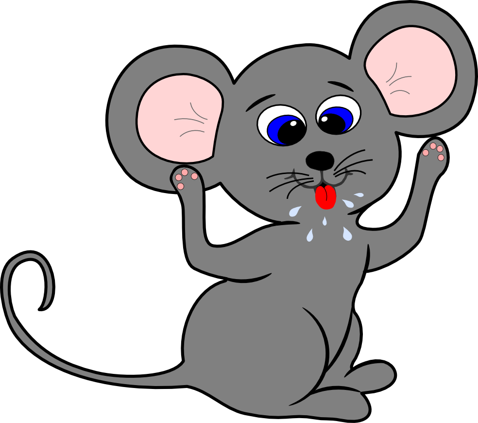 984x870 Rat Clipart Mouse Face