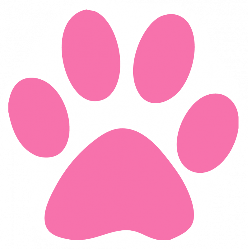 797x800 Cat Paw Prints Images Free Download Clip Art