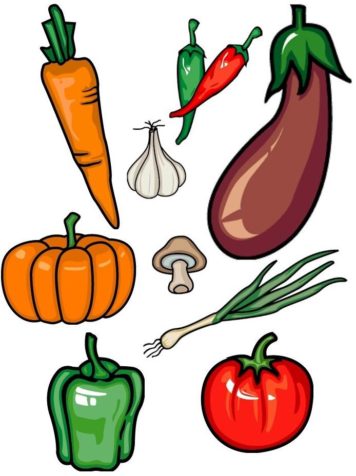 694x928 Thanksgiving Cornucopia Pictures Free Download Clip Art