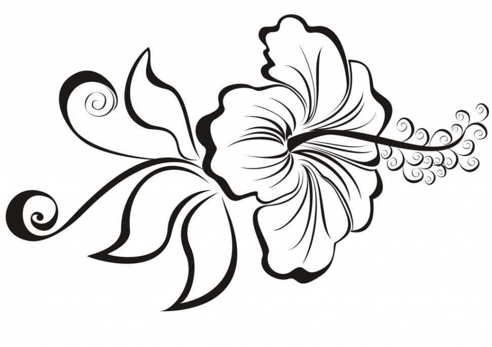 970x685 Coloring Pages Alluring Cool Flowers To Draw Flower Line