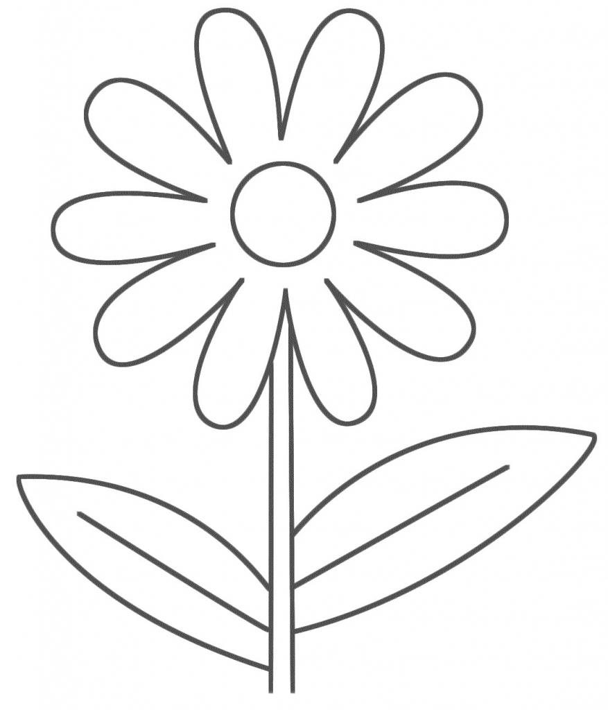 877x1024 Easy Flower Drawings