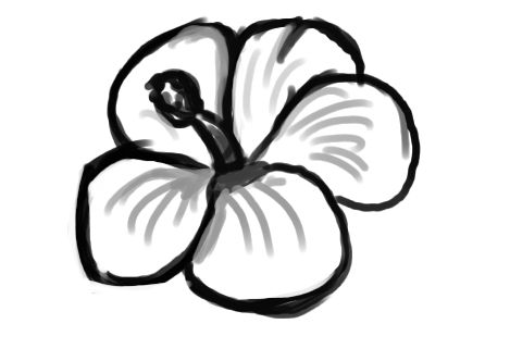 469x332 Flower Drawing Clipart