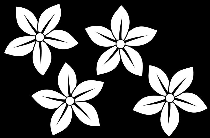 800x527 Line Art Clipart Flower Drawing