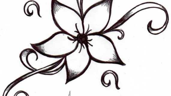 570x320 Simple Flower Drawings Simple Flower Drawing How To Draw Flower