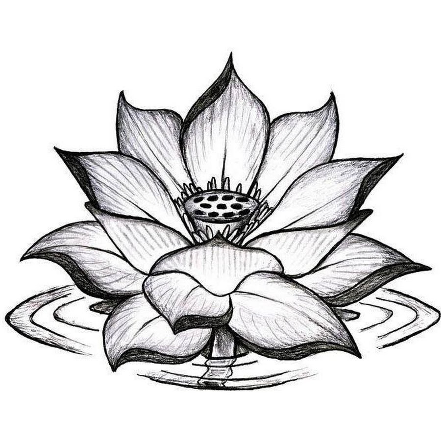 Download Best Tattoo Pictures: Pictures Of Flower Tattoo Designs