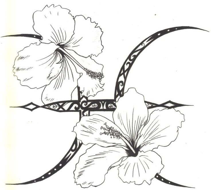 Hibiscus Tattoo Drawing: Pictures Of Flower Tattoo Designs